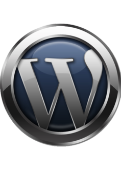 WordPress training classes